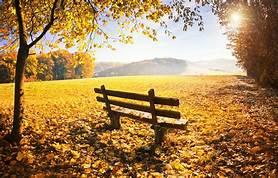 Herbstaktionstag im Klausenboden